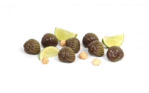 Étui de 7 escargots